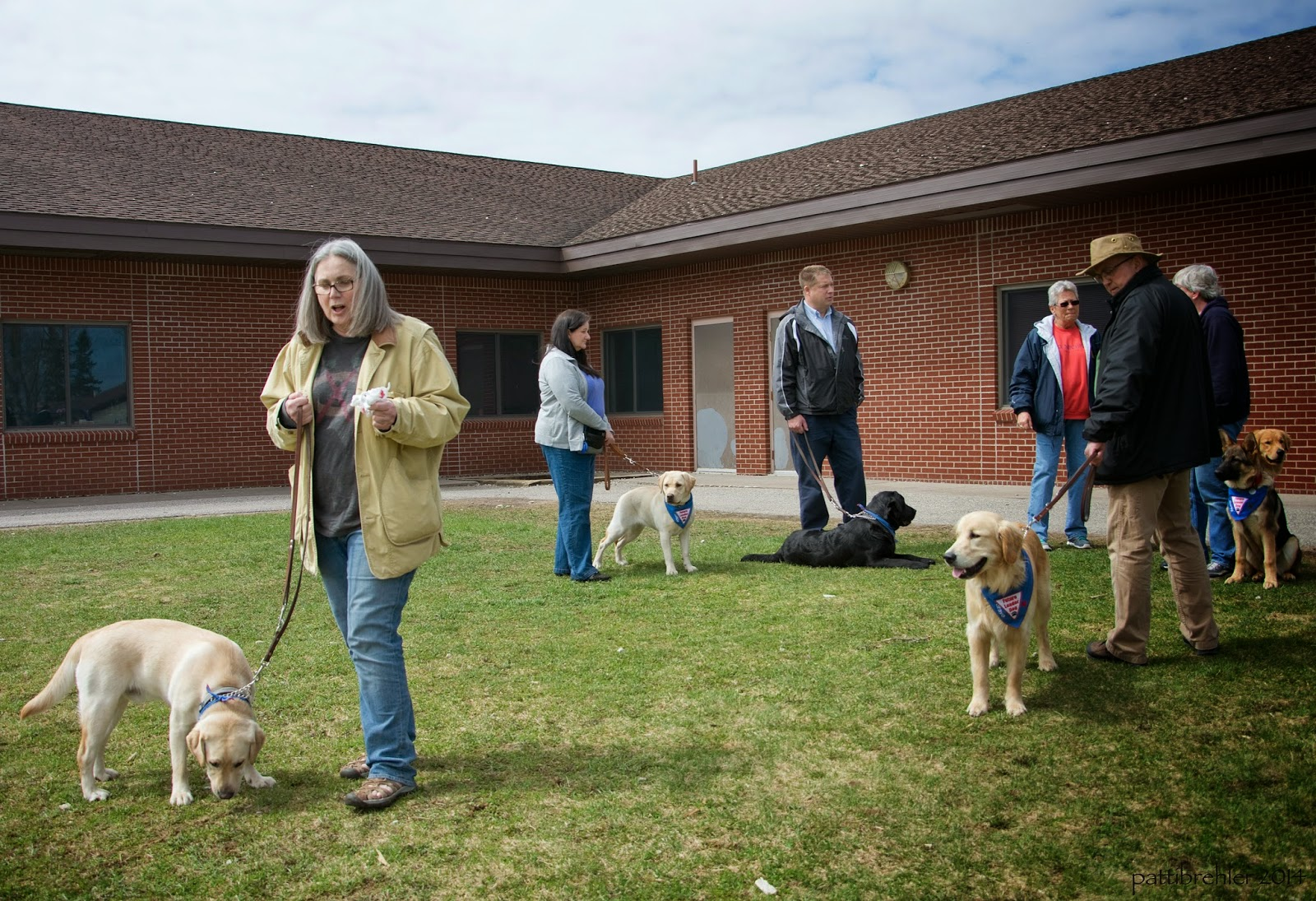 A group of four women and two men, and six future leader dogs ( two yellow labs, one black lab, two golden retrievers and one german shepherd) stand in an elementary school yard. The brick sided building is behind the group. Three of the dogs are standing, two are sitting and the black lab is lying down.