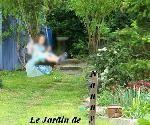LE JOURNAL du JARDIN depuis 2007