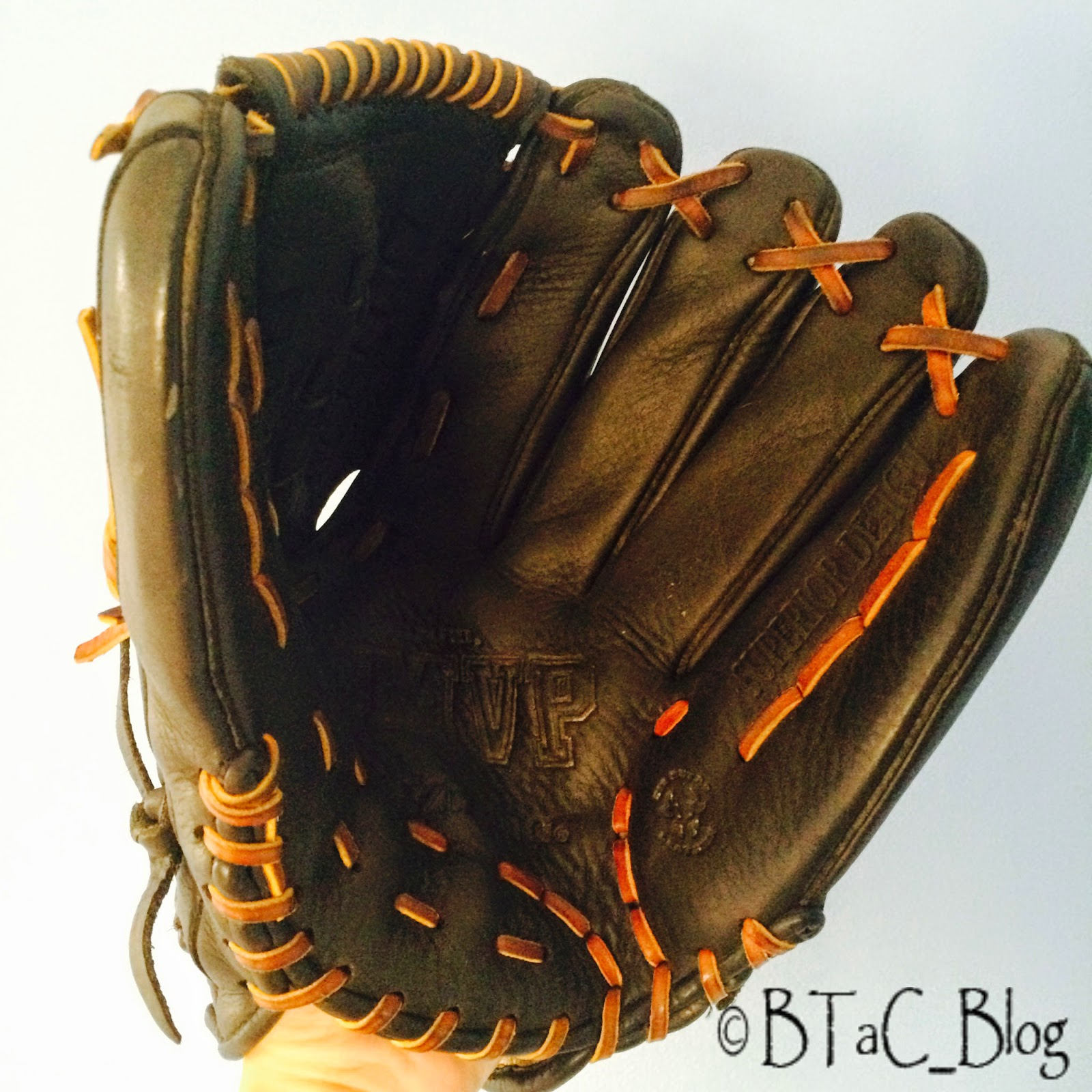 This is an adult softball glove. A child's baseball glove would work too.