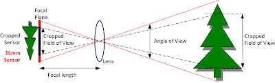 Lens Crop Factor