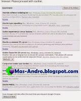 Internet Android Ngebut-Tweak Browser Chrome