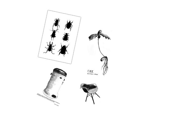 konsttryck, svartvit tavla, svartvita tavlor, poster, posters, print, prints, annelies design & interior, anneliesdesign, the bin, papperskorg, stol artprint, artprints, skalbagge, skalbaggar, oak, ekollon, webbutik, webbutiker, webshop, svartvitt