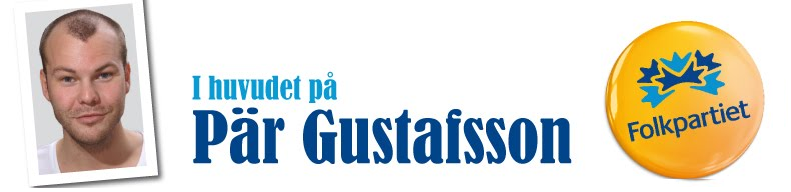 Pr Gustafsson (FP)