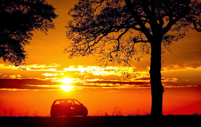 A car drives along an alley as the sun sets near Petersdorf, eastern Germany, on October 26, 2013