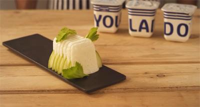 recetas con Yolado yogurt helado