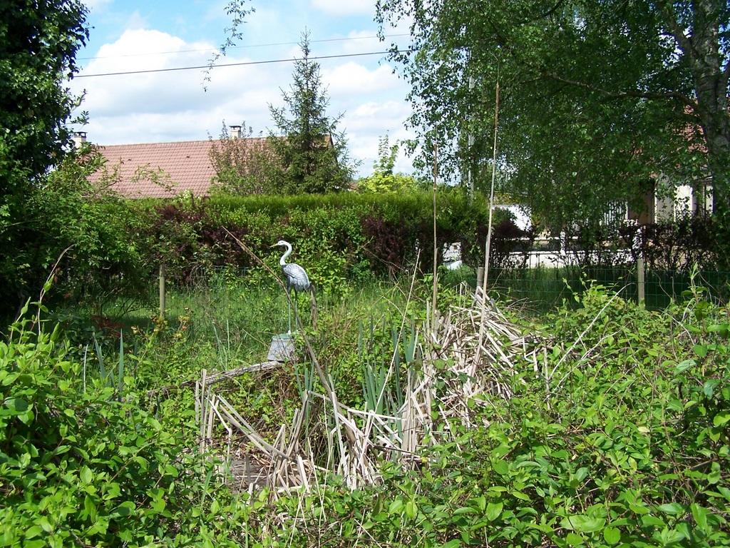 Bienvenue dans mon jardin a fill sur sarthe sur le for Bienvenue dans mon jardin