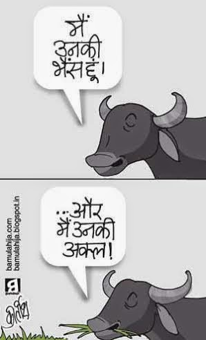 azam khan cartoon, cartoons on politics, indian political cartoon