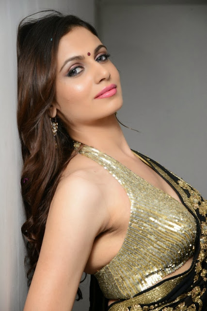Simran Kaur in lovely Black Saree with Jari Emroidery Work and a deep Neck Golden Sleveless Choli