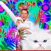 Miley Cyrus, gatos e muita psicodelia nos novos comerciais do VMA 2015
