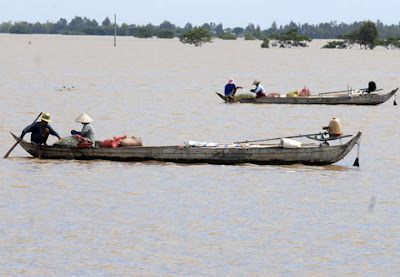 Năm nay lũ lớn ở miền Tây nên người dân trúng mùa cá, tôm.