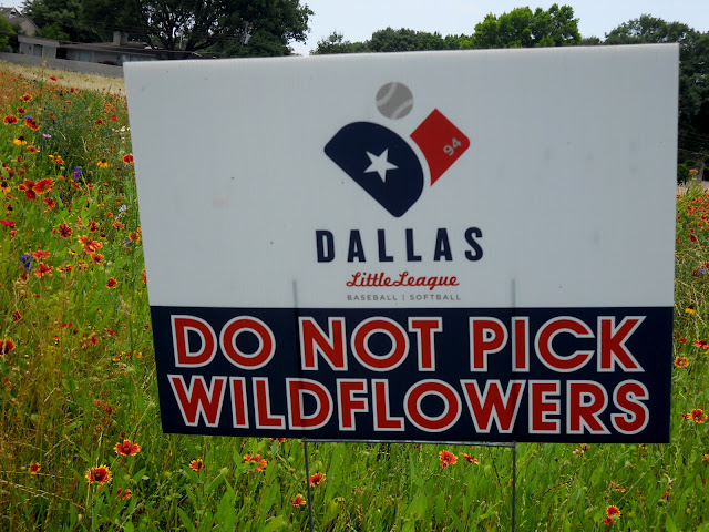 Do not pick the wildflowers - erected by Dallas Little League at Winfrey Point, White Rock Lake, Dallas