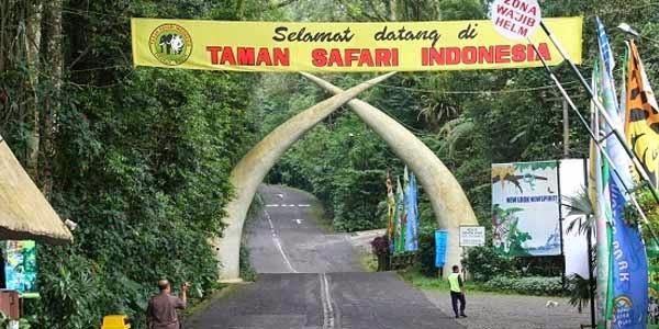 Tempat Wisata Pilihan Taman Safari Indonesia di Bogor
