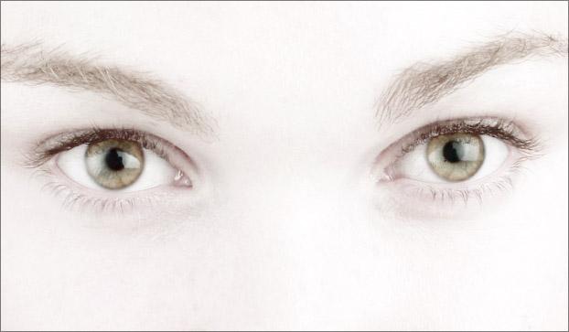 [Image: owl-eyes.jpg]