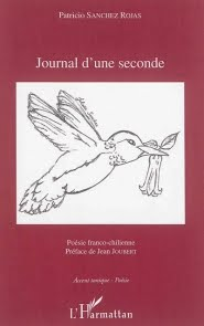 Journal d'une seconde, Patricio Sanchez-Rojas