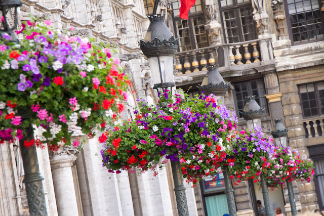 Flowers at Grand Place in Brussels