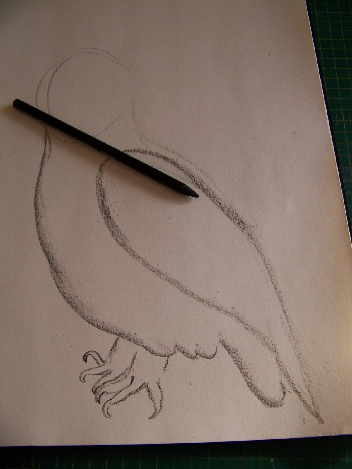 how to draw a realistic owl step by step