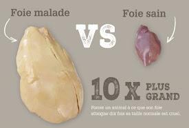 Foie gras : quand on sait, on arrête !