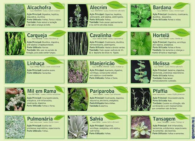 Saúde Natural