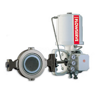 rotary control valve