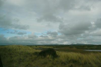 Lane County, Coast, Pacific Ocean, Coast Range, Oregon Dunes