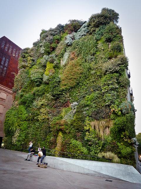 Senseofhumus the vertical garden created by botanist for Art jardin creation