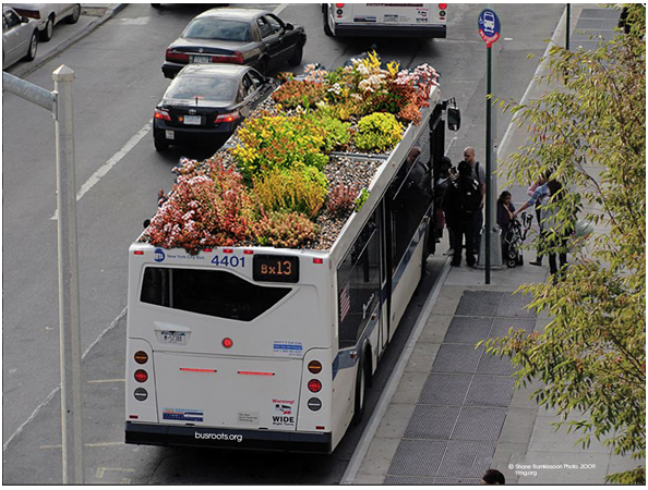 bus-deco-toit-jardin