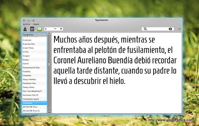 TypeCatcher_Google_Fonts.jpg