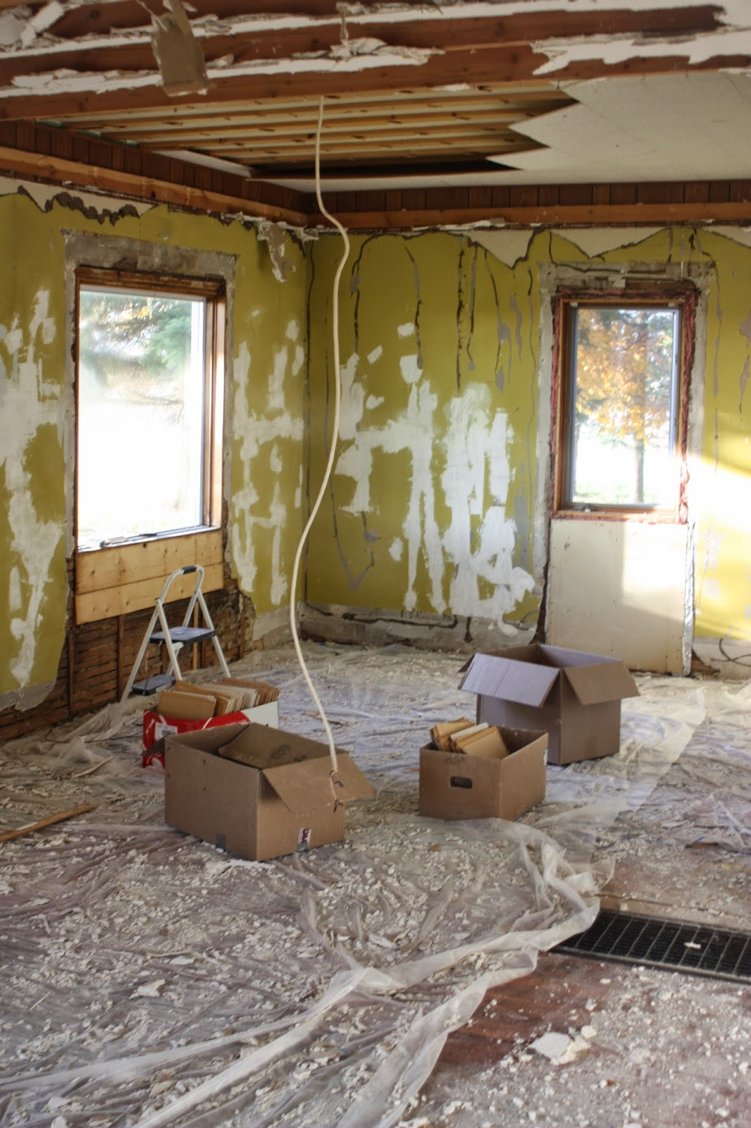 Demolition phase iii we struck gold the popcorn ceilings get so it was a lot of ripping down sheetrock removing the drop ceiling frame and ripping out the old ceiling tiles the filing boxes we used for moving dailygadgetfo Images