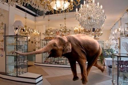 Sezione dame Silverine - Pagina 9 Elefante