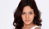confidenet and sexy Pavani reddy latest hot photoshoot stills