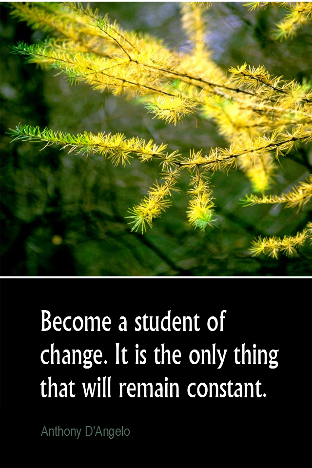 visual quote - image quotation for CHANGE - Become a student of change. It is the only thing that will remain constant. - Anthony D'Angelo