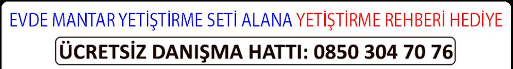 ALTBİLGİ