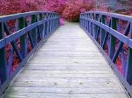 Hay tres cosas en la vida que se van y no regresan jamás:las palabras, el tiempo,las oportunidades
