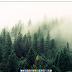 Desktop Zero: Cómo Ocultar Los Iconos De Tu Escritorio Con Un Solo Clic