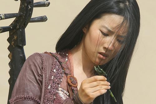 crystal liu yifei in forbidden kingdom photo 04