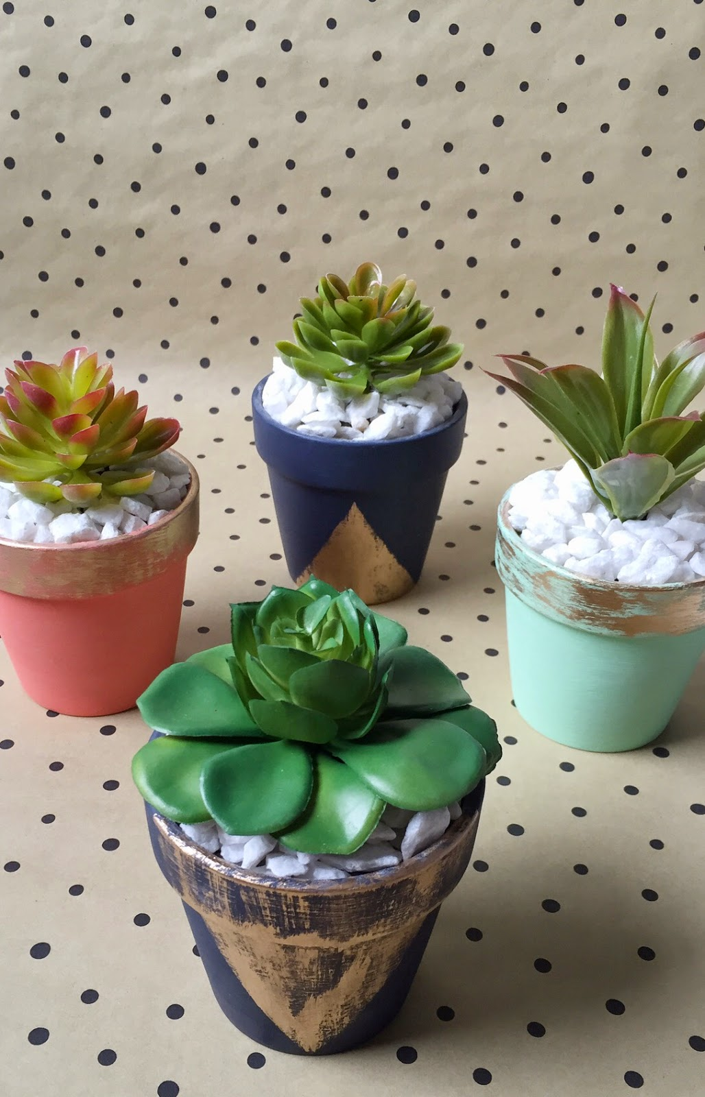 Home Made Austin: Hopping into Spring with Colorful Succulents + ...