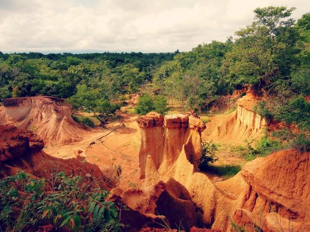Forest Park Phrae rocks