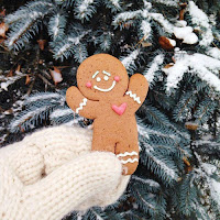 Biscuit de Noel Weheartit Inspiration Décembre Lifestyle Mademoiselle latinne