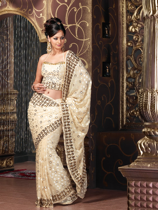 New sarees latest work sarees for Wedding party dresses in sri lanka