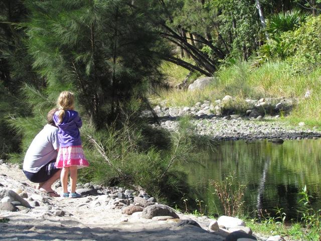 Nature watching at Carnarvon Creek