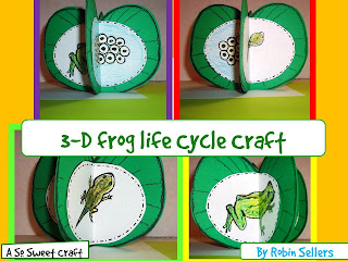 life cycle of a frog craft