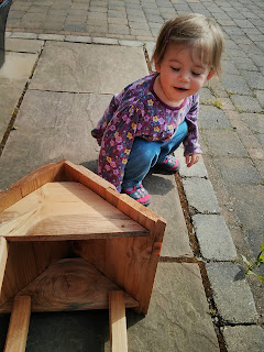 building bird table