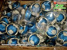 Souvenir Asbak Penganten Jawa Clay Bogor
