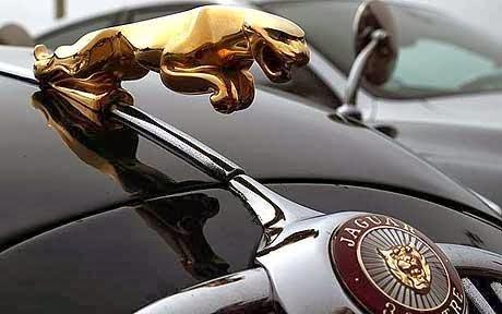 Superb Jaguar Logo