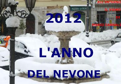 2012 L'ANNO DEL NEVONE