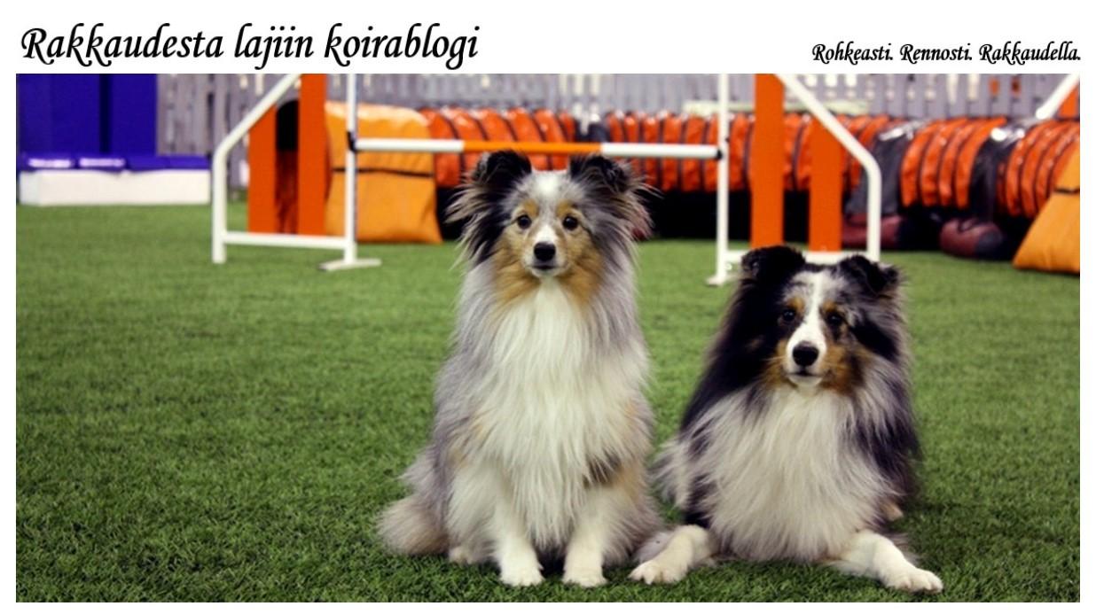Rakkaudesta lajiin koirablogi