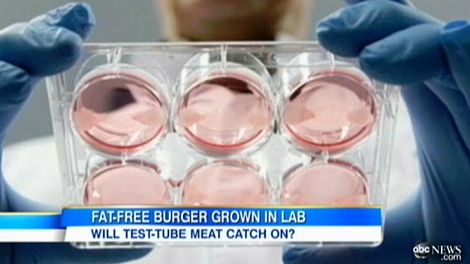 Test Tube Burger To Be Served In London