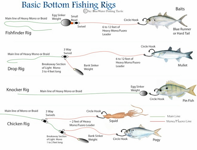 Various Kinds Of Fishing Techniques