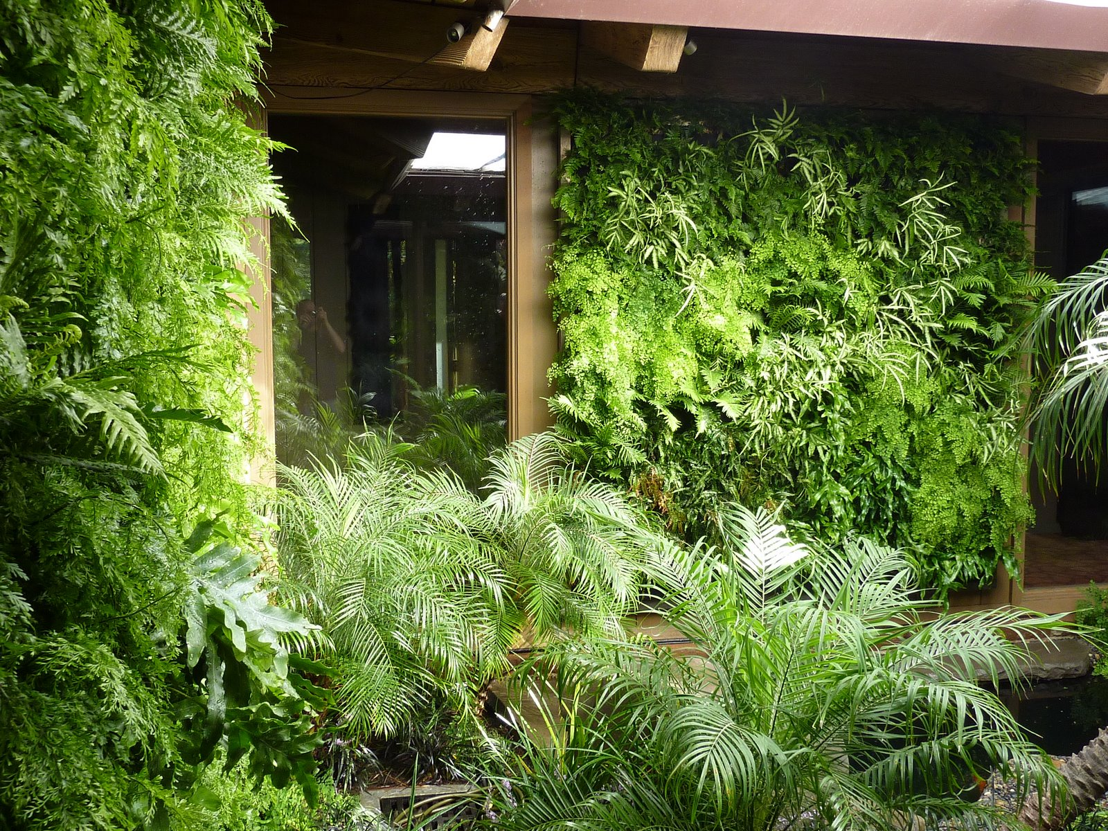 Plants On Walls Vertical Garden Systems Fern Walls Los