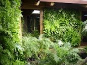 #5 Vertical Garden Ideas